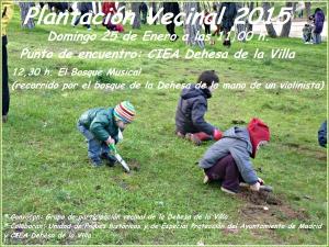 PLANTACION VECINAL 2015